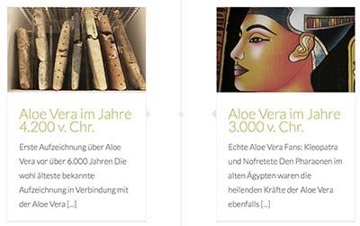 Zur Geschichte der Aloe vera