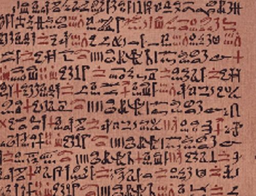 Aloe vera im Jahre 1.520 v. Chr.
