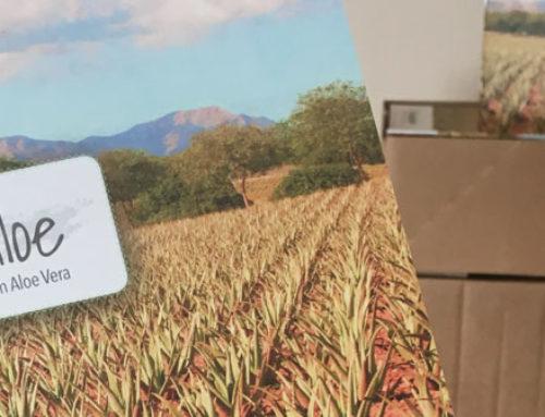 Die neuen Biodaloe Produktbroschüren sind da!