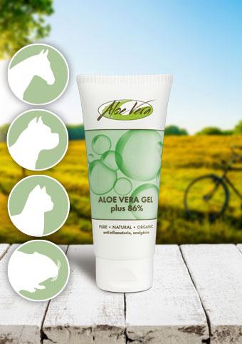 Aloe Vera Gel 86%