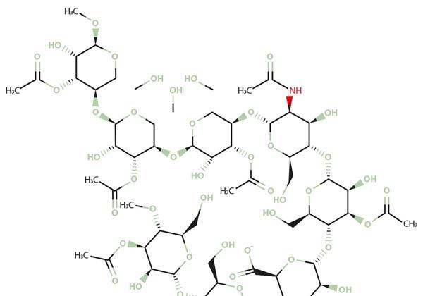 Acemannan / Aloverose Verbindung