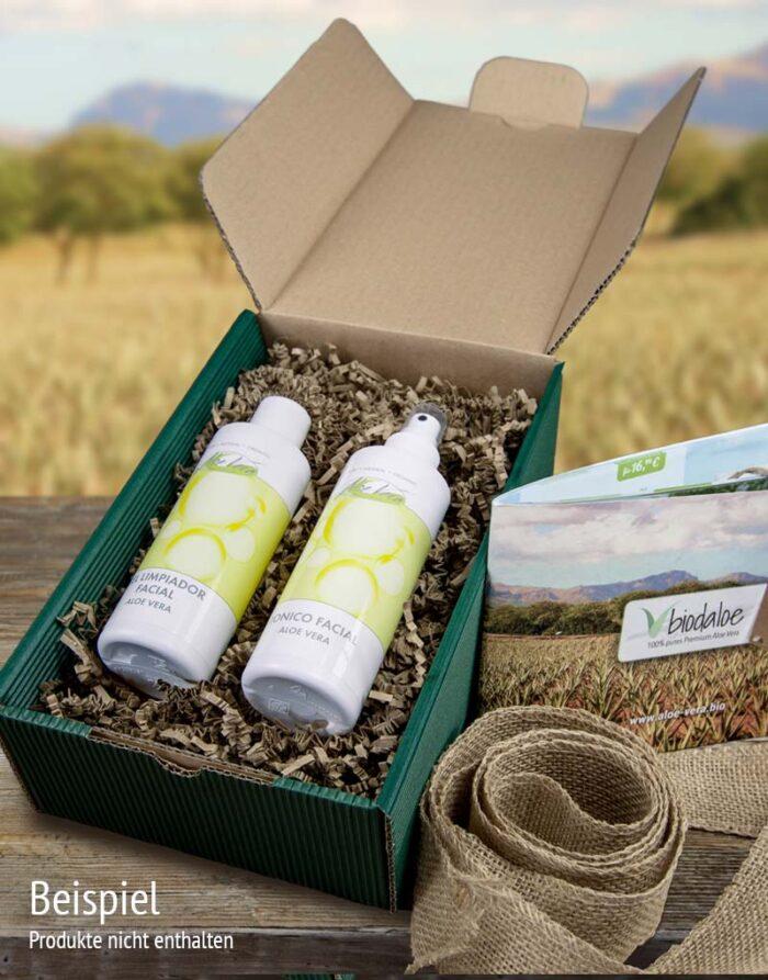 Geschenkbox Verpackungsservice Beispiel Cleaner Set